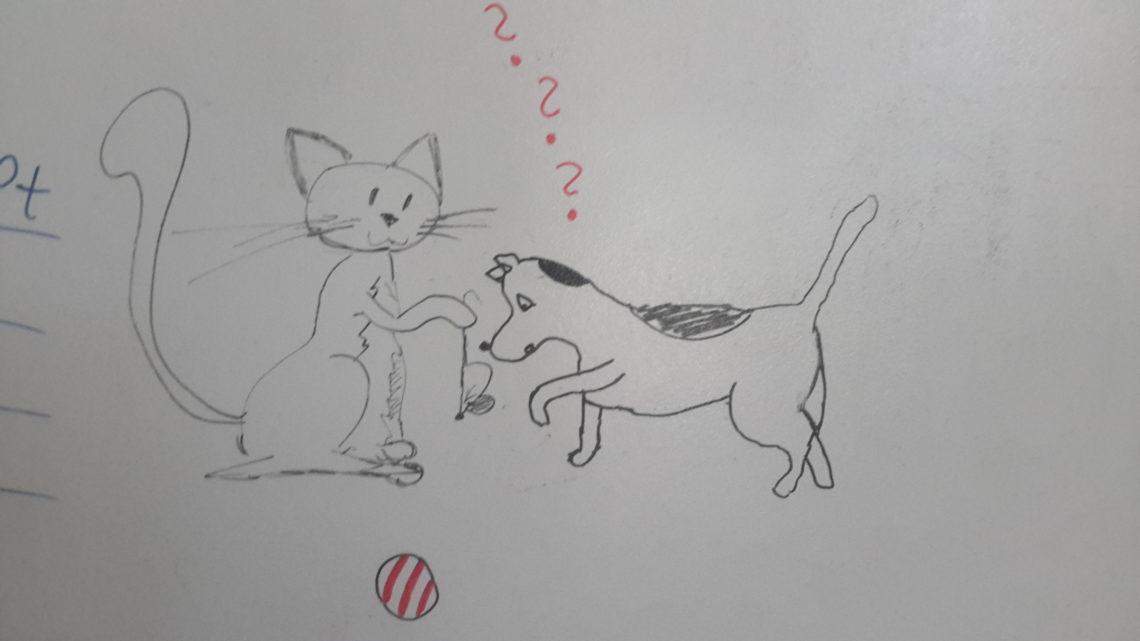 A co to mysz? (Jak pies z kotem – odcinek 4)