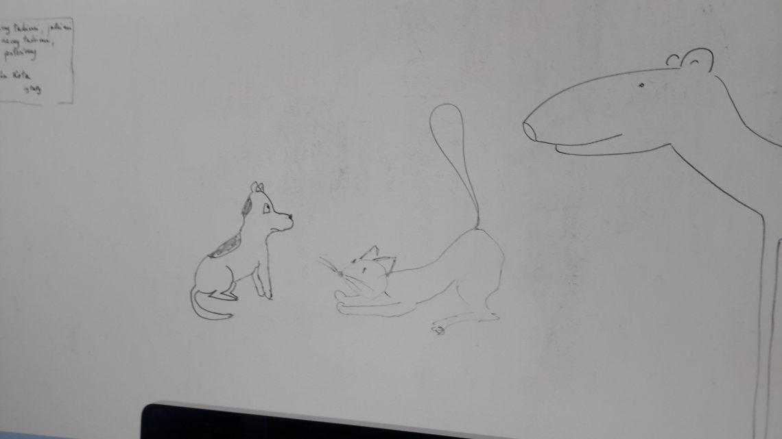 Nudny jakiś ten wielbug (Jak pies z kotem – odcinek 13)