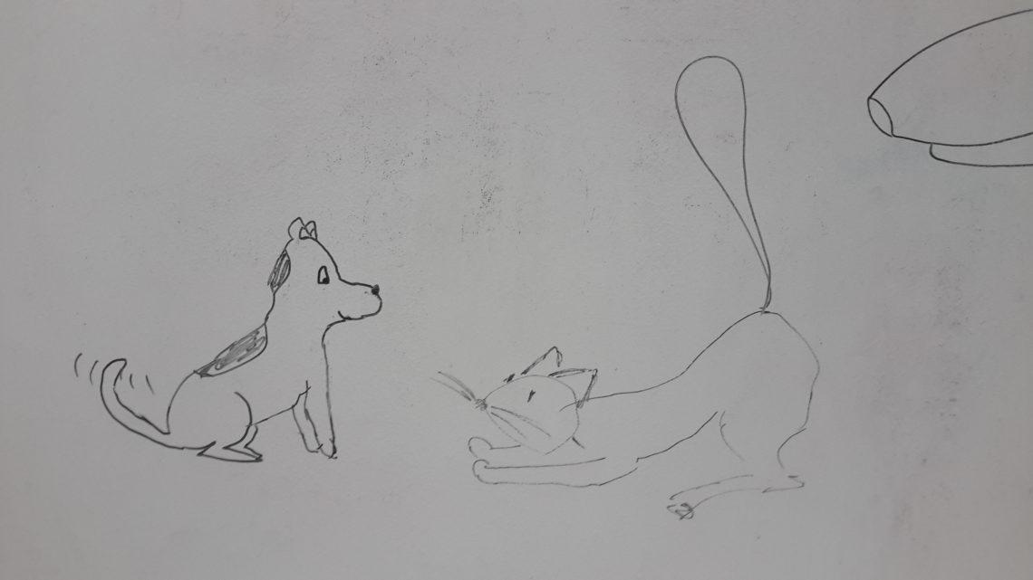 Bawimy się? (Jak pies z kotem – odcinek 14)