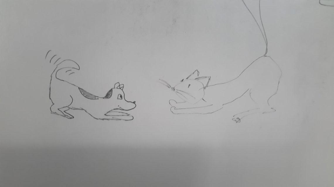 Bawmy się! (Jak pies z kotem – odcinek 15)