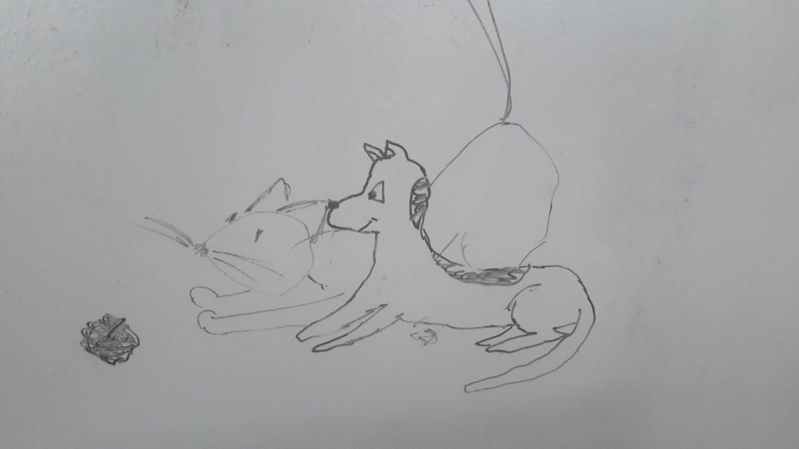 Poleżmy sobie razem (Jak pies z kotem – odcinek 17)