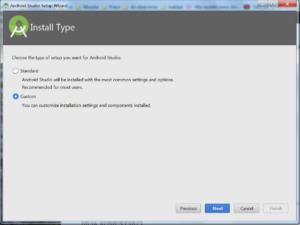Okienko Install Type, pozwala wybrać opcję Standard lub Custom. Przyciski Previous, Next, Cancel, Finish (nieaktywny)