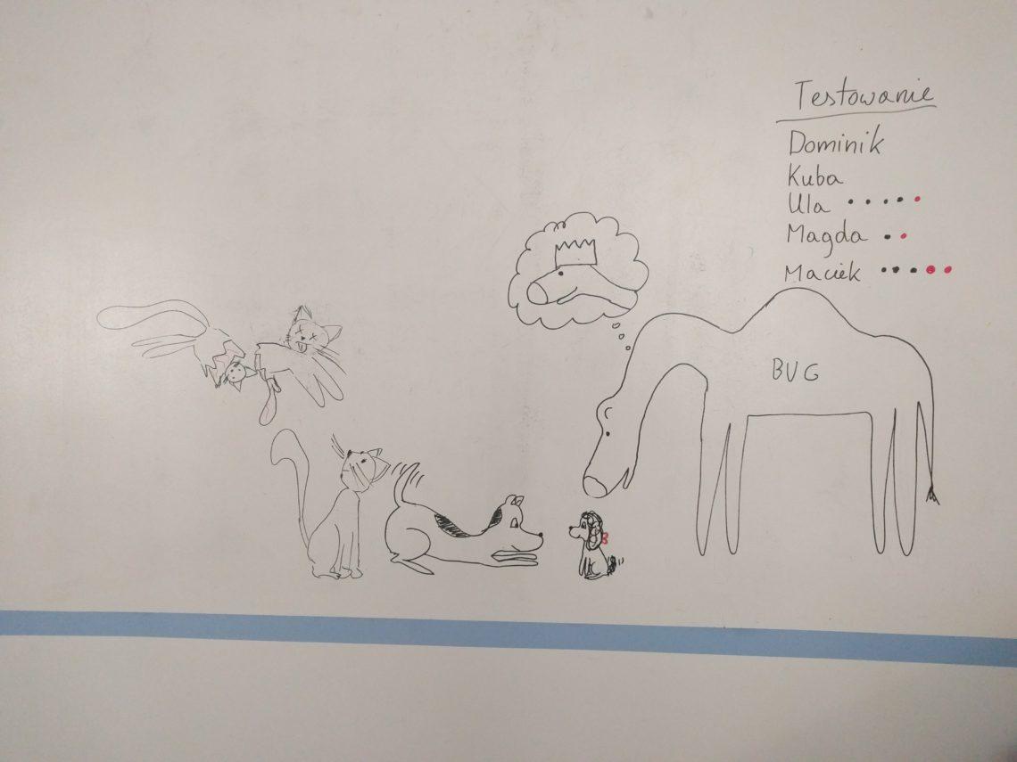Wielbug rządzi (Jak pies z kotem – odcinek 138)