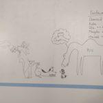 Wielbug rządzi (Jak pies z kotem - odcinek 138)