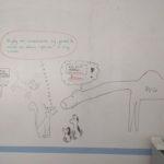 Wielbug wypiera rzeczywistość (Jak pies z kotem - odcinek 187)