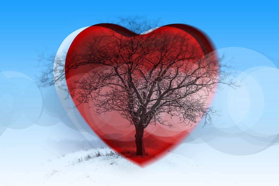 Miłość jako nasionko leśne