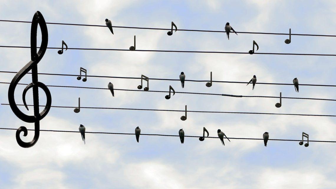Gdzie słychać śpiew tam idź