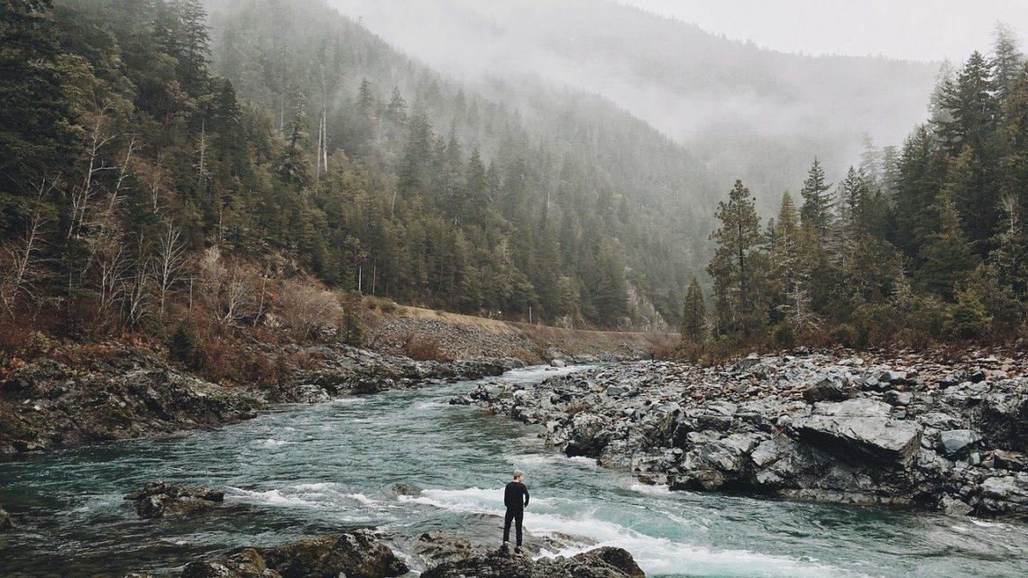 U zagadkowej życia rzeki
