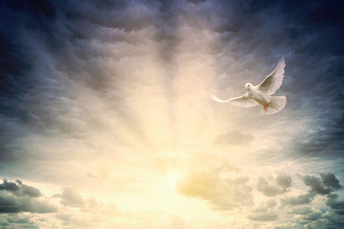 Duch Święty przychodzi skonfrontować nas z ciemnością