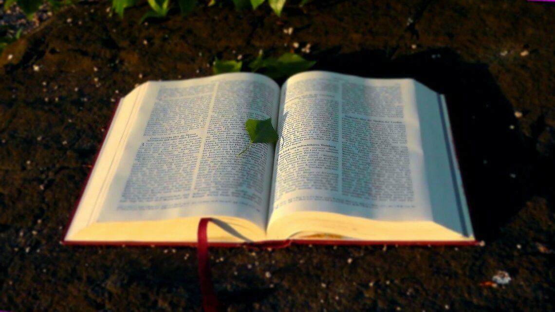 Głos Boży poznajemy po tym…