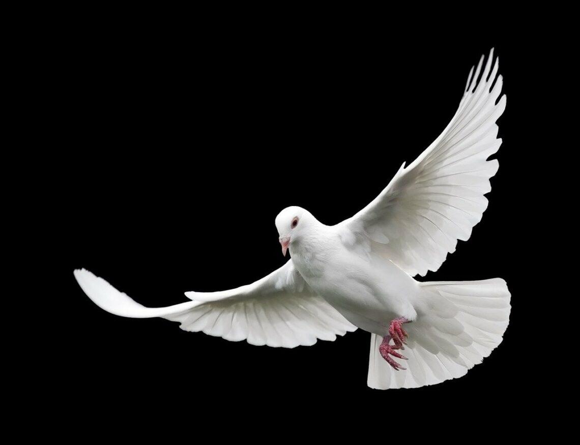 Kiedy Duch Święty czegoś pragnie