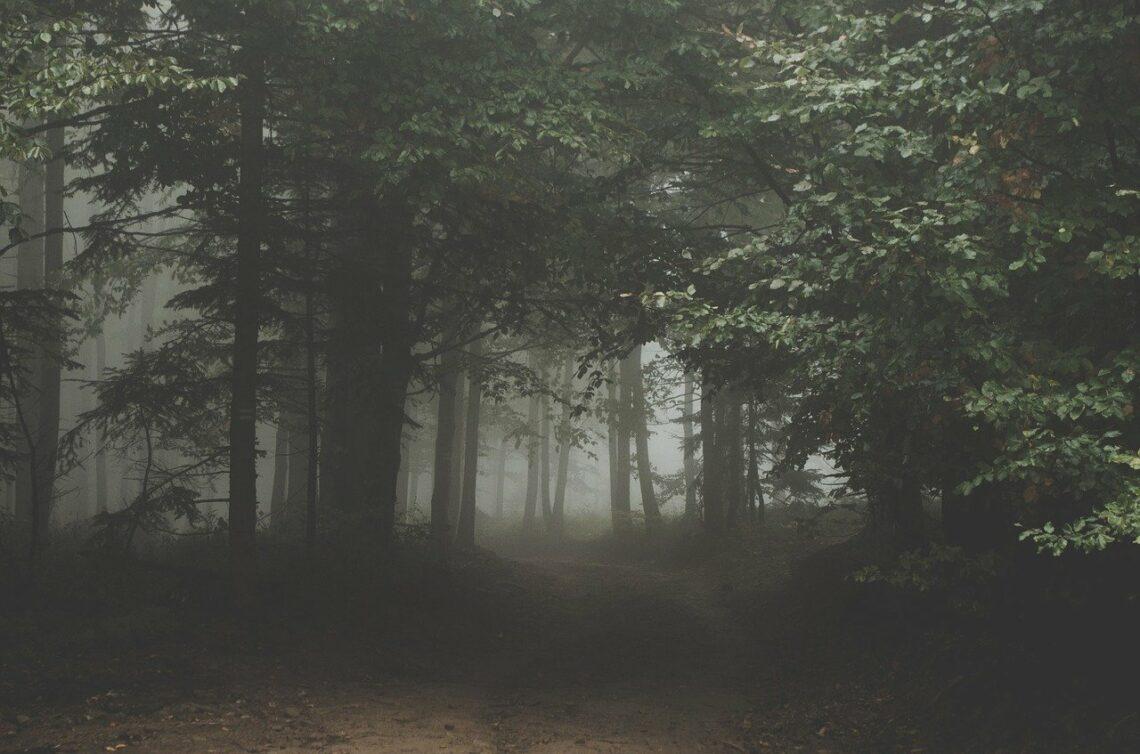 Strach, ból, kłopoty i zwątpienie